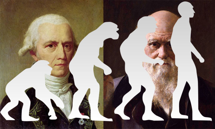 Evolution? What Evolution?