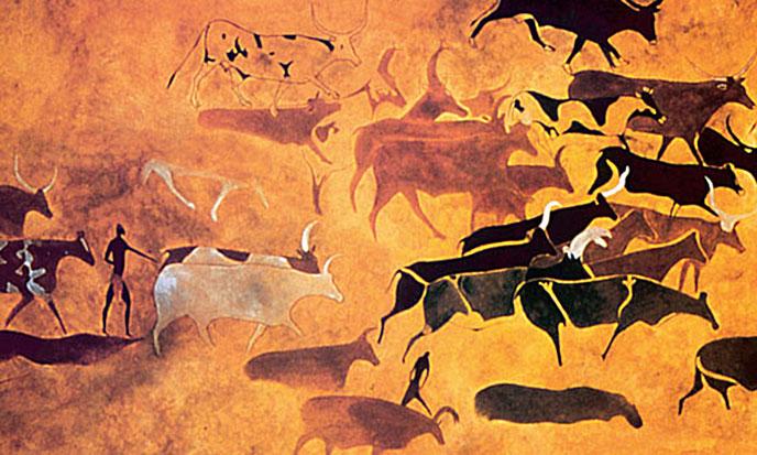 Bulls_In_Africa-688po