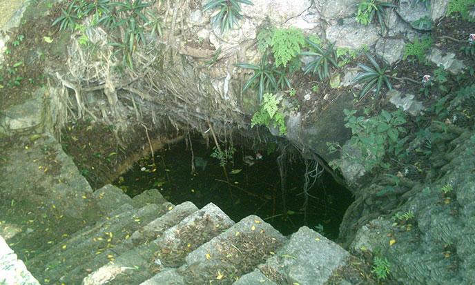 cenote_del_parque_de_cholul_yucatan-688po