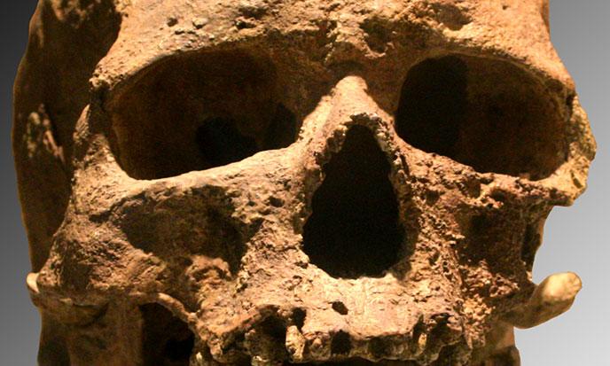 Neandertal et nous