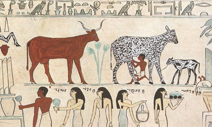 egyptian_domesticated_animals-688po