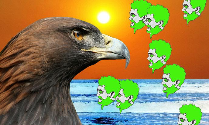 aigle-castaneda-soleil-pixabay-stefKervor-688po