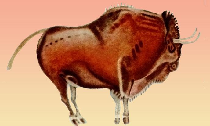 altamira-bison-688po