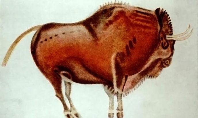 bisonte-de-altamira-688po