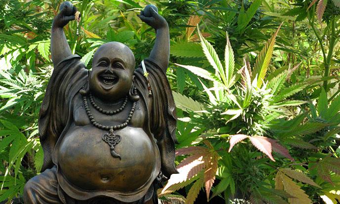 bouddha-chinois-chanvre-688po