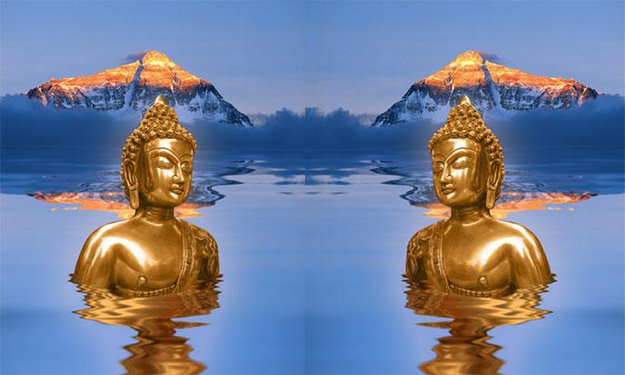 bouddha-lotus-688po