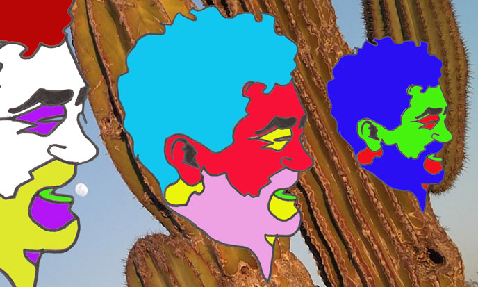 castaneda-stefKervor-cactus-pixabay-688po