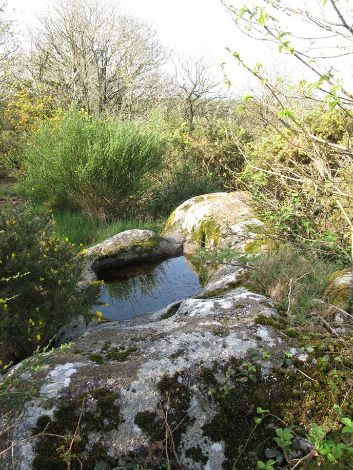 croquelien-15-avril-2015-bain-xs-688px