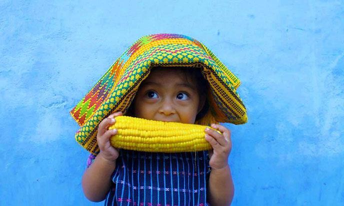 cultura-y-lingua-maya-688po