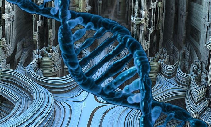 demiurges-fractales-genetique-createurs-688po