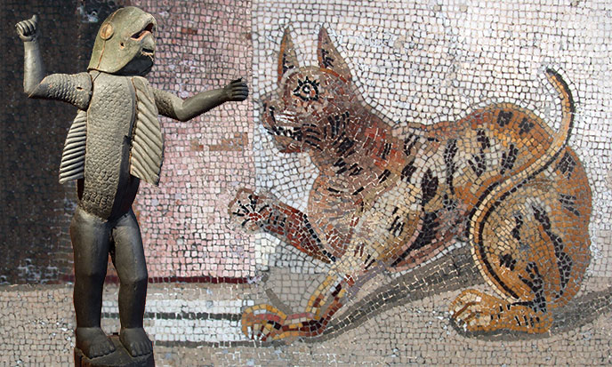 homme-requin-dahomey-chat-mosaique-romaine-sk-dp