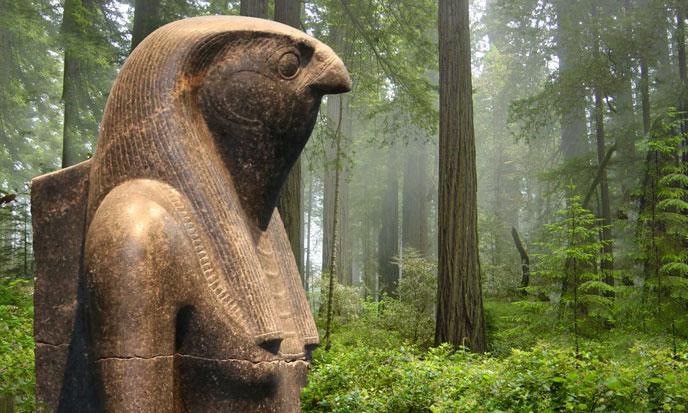 horus-RedwoodNationalPark-ski-688po