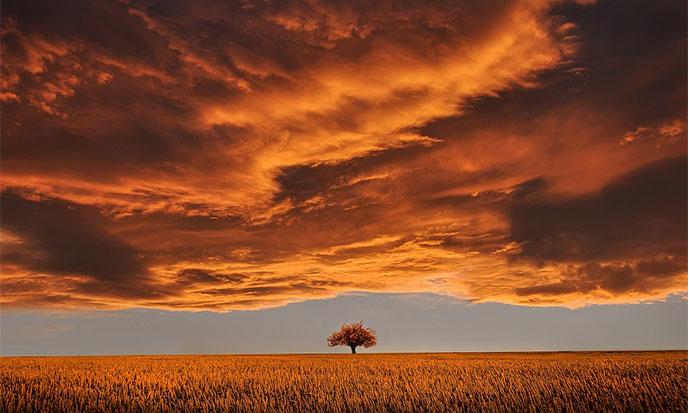 lumiere-automne-688po