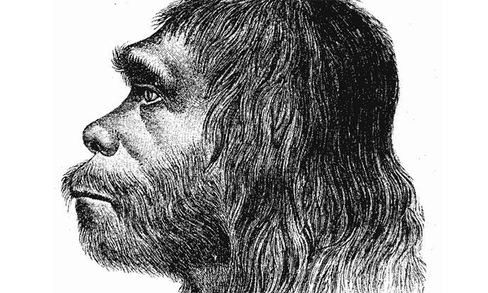 neandertal-facies-reconstitution-668po