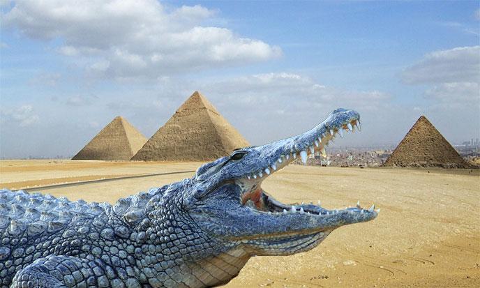 pyramides-crocodile-nil-688po