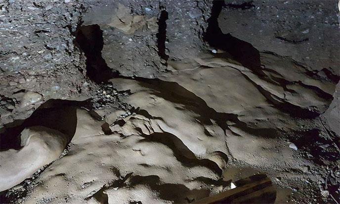 ravne-haris-delibasic-2-688po