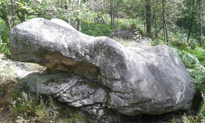 rochers-fontainebleau-photo-13-jSzymansky-688po