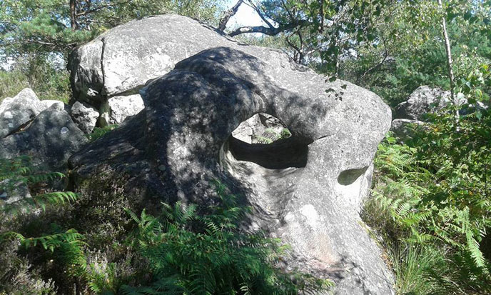 rochers-fontainebleau-photo-7-jSzymansky-688po