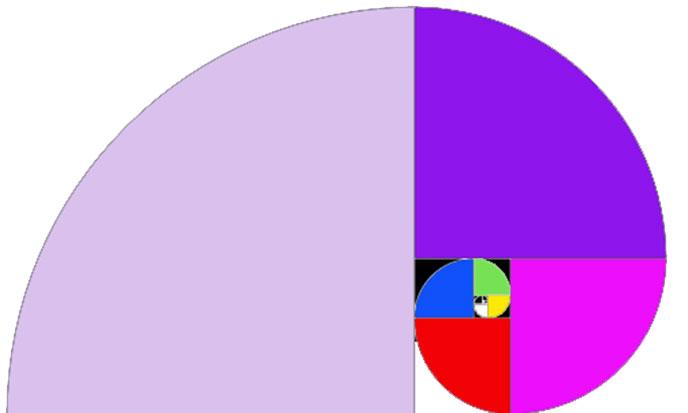 spirale-fibonacci-688po