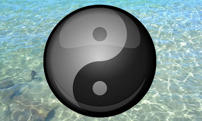 tao-mer-pixabay-688po